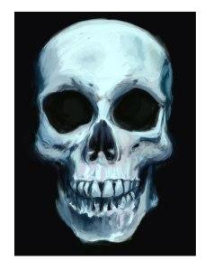 skull2ejemplo-copy